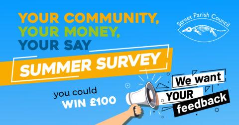 Summer Survey tag