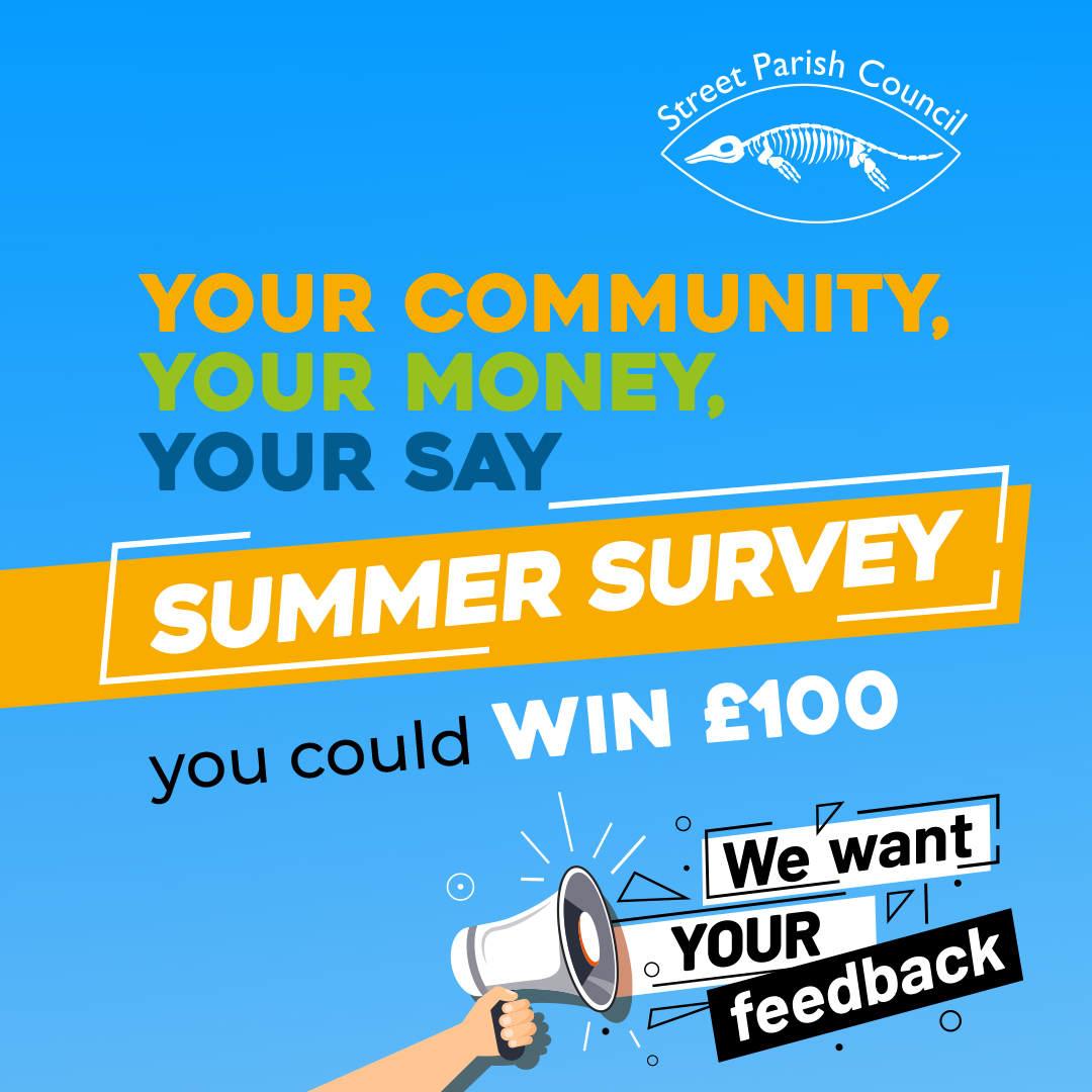 Summer Survey 2021 – Results